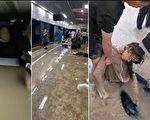 火山:郑州那趟开往死亡的地铁原来可以刹车