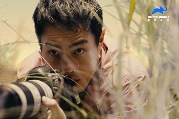 楊祐寧任動物星球頻道大使 扮野生動物攝影師