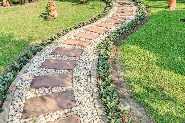 Stone,Walkway,In,The,Outdoor,Green,Garden