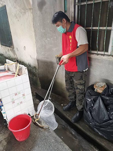 夏季蛇類、蜂類出沒頻繁,農業處提醒,蛇類喜歡躲藏在縫隙、潮濕的陰暗處,住家及周圍庭院環境維持整潔非常重要。