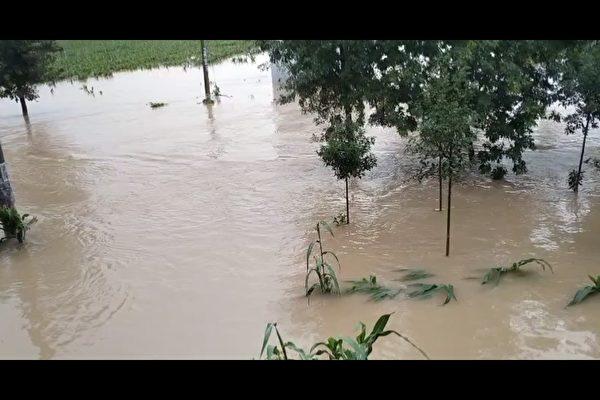 河南四水庫泄洪淹村 兩千村民被困無救援