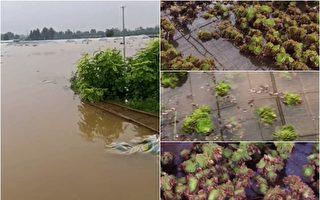 郑州村民:水库半夜泄洪 我们都是跑出来的