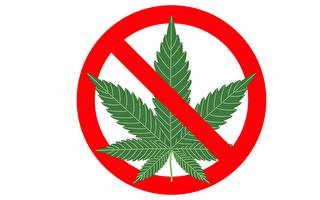 紐約上州沃特敦市議會投票決定 禁止當地開大麻零售店