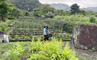 農的傳人 海大USR計畫推廣貢寮在地食材