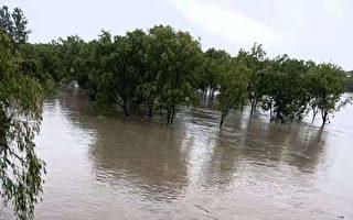 【一線採訪】颱風再登陸 浙江洪水淹農田
