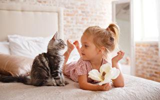 家有孕妇和小孩不能养猫? 猫专科医师说明