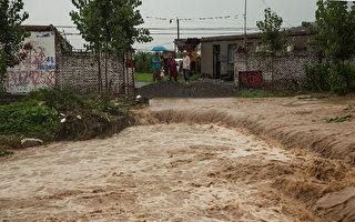 百頭豬被淹死 鄭州農民絕望:天都塌了