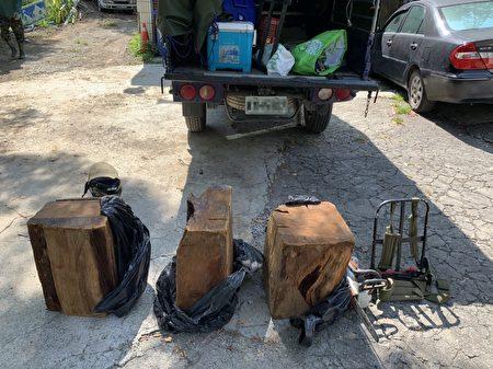 山老鼠盜採國有林木,大溪警攔截圍捕查獲。