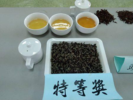 全国优质东方美人茶评鉴比赛,苗栗韩顺雄夺冠。
