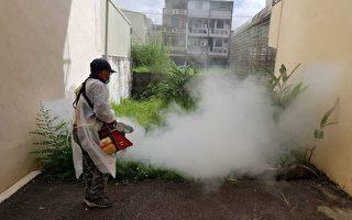 防疫不忘登革热防治 屏东清倒近3万积水容器