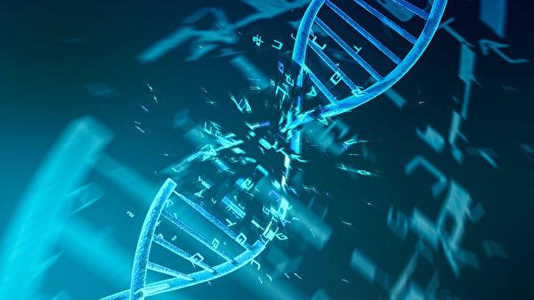研究:某些病毒DNA内发现第五种碱基