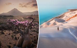 組圖:聞名全球的地理奇觀 索科特拉島