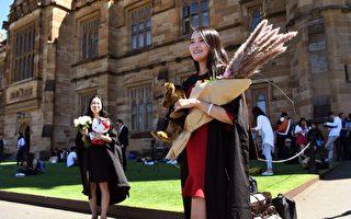 报告:国际学生骤减 西澳经济损失17亿