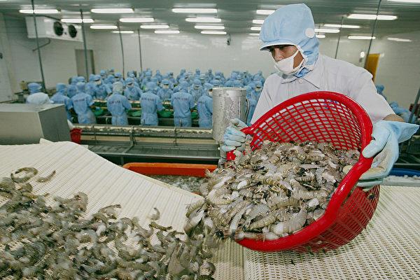 中共以蝦感染為由拒接收千個集裝箱 印度抗議