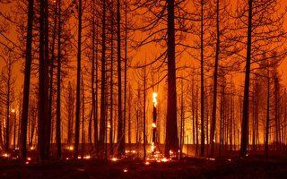 強勁風勢助長 迪克西山火迅速往東蔓延