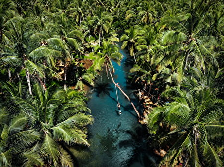 Maasin River的椰林鞦韆攻佔不少Instagram版面。