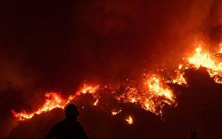 組圖:歐洲遭熱浪侵襲 希臘土耳其野火頻發