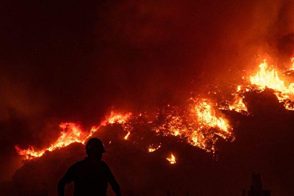 组图:欧洲遭热浪侵袭 希腊土耳其野火频发