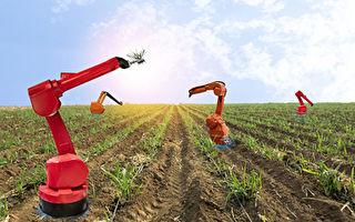 """农业前景:努力建造""""天堂""""还是等着滑向""""地狱""""?"""