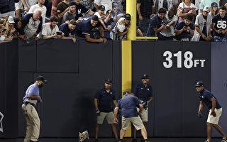 小貓闖入美國職棒比賽 搶走全場目光