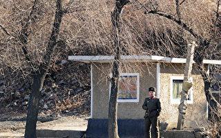 出现COVID-19症状得不到治疗 两朝鲜士兵死亡