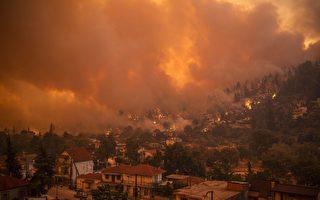 意大利高温破纪录 欧洲多国面临火灾威胁