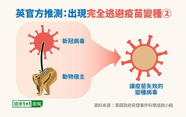 新冠病毒变种可能性:进入动物体内进行突变。(健康1+1/大纪元)
