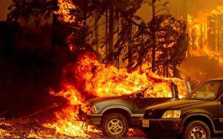 【名家专栏】美国西部野火的罪魁祸首