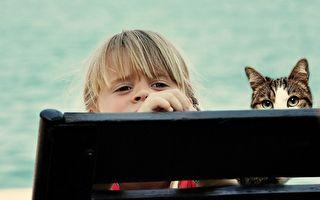 幼儿攀爬阳台栏杆遭猫咪阻拦 视频热传