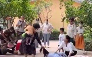 動物模仿遊客群毆?北京動物園聲明火了