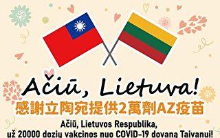 """王友群:立陶宛九""""杠""""中共 中南海又遇麻烦"""