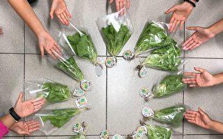 教室小農一步蔬果 新上食農教育獲肯定