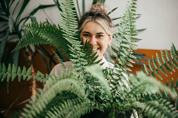 蕨类植物种类多好看又耐活 盆栽照顾5技巧