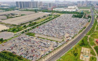 郑州大量泡水车空拍照惊人 网民:车主呢?