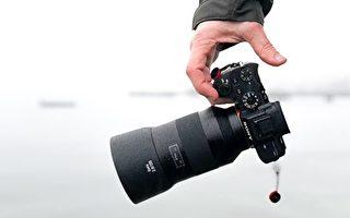 好奇的松鼠和小鸟联手查看摄影师的相机