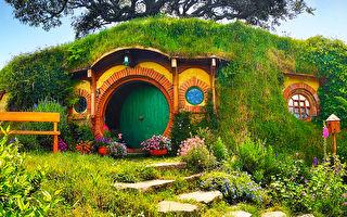英男子在自家花园建霍比特人小屋