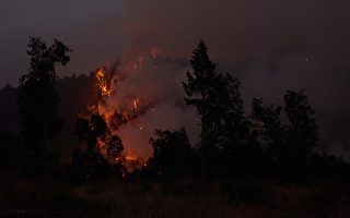 卡爾多山火燒毀超10萬英畝 北加州關閉所有國家森林