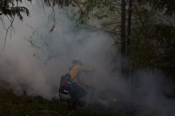 卡爾多山火持續擴散 灣區釀酒師憂生計不保