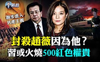 【拍案惊奇】赵薇IG突发文 500红色权贵也危机?