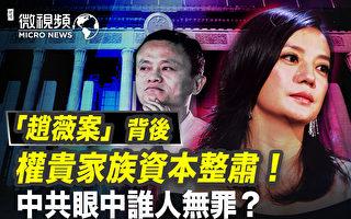 【微视频】封杀赵薇背后 权贵家族资本遭整肃
