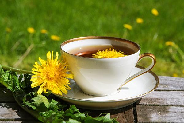 雜草變藥草 自製蒲公英茶助消化、增強免疫力