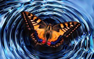 網民分享真實的「蝴蝶效應」故事(上)
