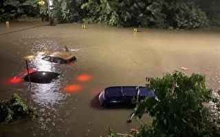 纽约市暴雨洪涝死亡升至13人 11人住地下室