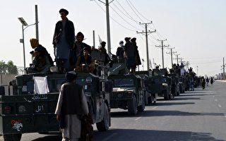 前CIA局长:基地组织或在阿富汗东山再起