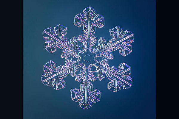 組圖:一億像素特製相機拍出的精美雪花照