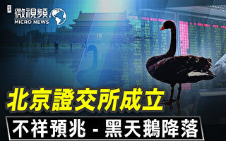 【微視頻】北京成立證交所不詳預兆 黑天鵝降落