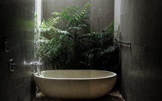 优雅而神秘 —— 深色浴室改造指南