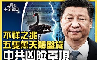 【十字路口】五隻「黑天鵝」盤旋 中共風險罩頂