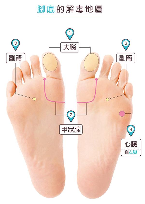 降血糖脚底按摩所用到的穴道。(苹果屋提供)