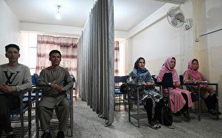 组图:塔利班统治下 阿富汗男女上课隔布帘